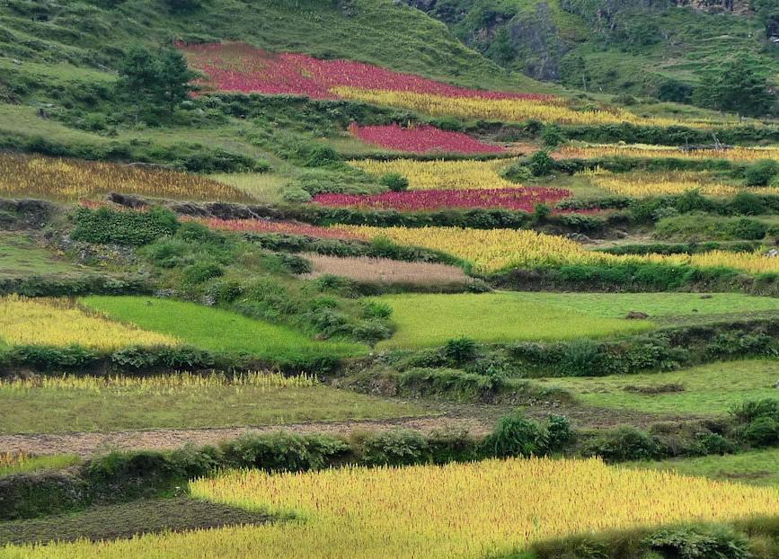 Tsum_Valley_Nepal_Trek_P1710334